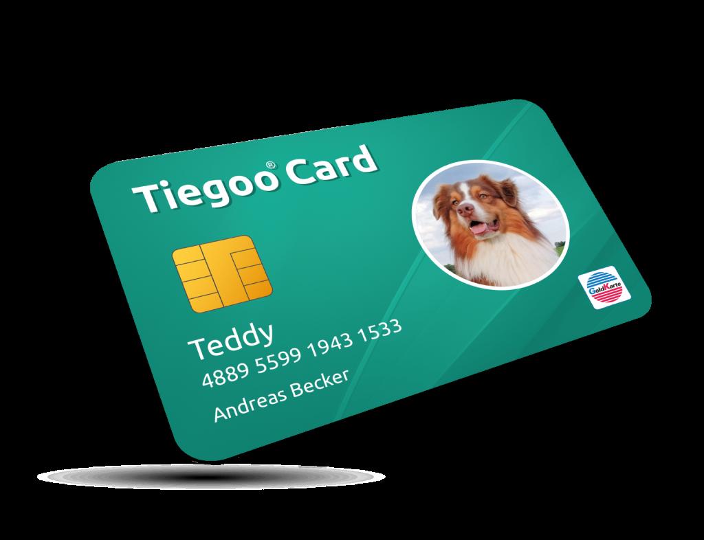 Tiegoo Card